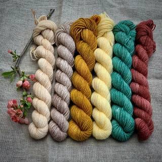 """The Danish Girl"" Mini Set. 🧶🌼🌿  #kathienchenyarns #miniyarnset #miniskeins #strickenmachtglücklich #indiedyedyarn #indiedyersofinstagram #yarn #knit #knitspiration #timetoknit #tonalyarn #yarnaddiction #woollove #yarnaddict #yarnlove #yarnlovers #tricot #yarnporn #knitspirit #knittersofinsta #handmade #slowfashion #indieyarn #knittingaddict"